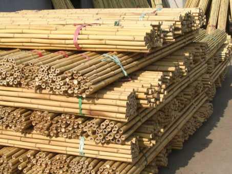 Bambusrohr Ø 3-4 cm