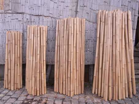 Hanoi Bambusrohr Ø 4-7 cm
