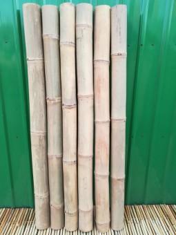 Bambusrohr Petung Ø 10-12 cm
