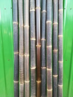 Bambusrohr Wulung Ø 9-10 cm